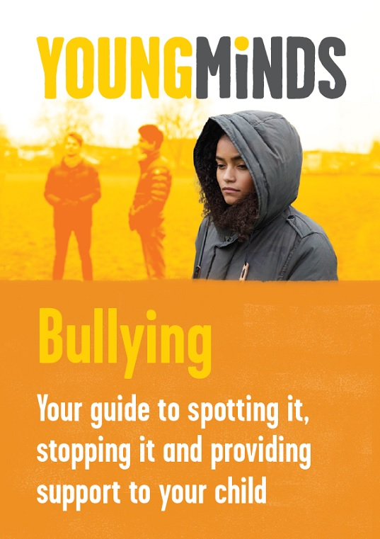 Bullying - your guide to spotting it, stopping it and providing support to your child
